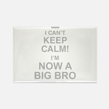 I Cant Keep Calm! Im Now A Big Bro Magnets