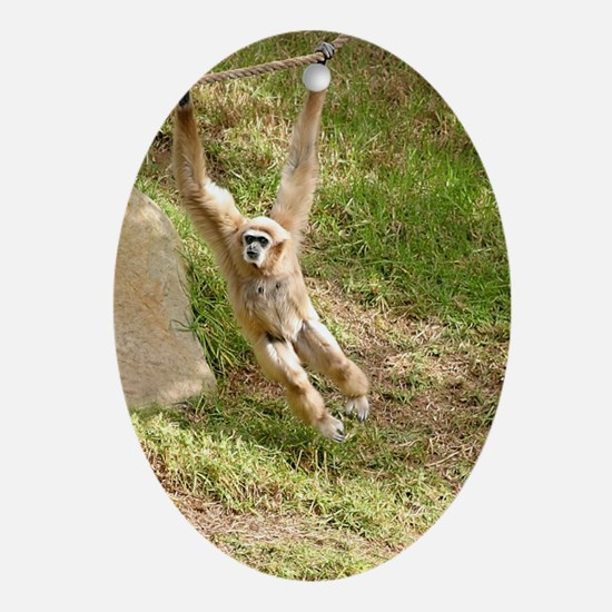 White Handed Gibbon Oval Ornament