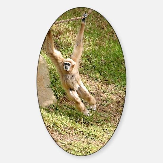 White Handed Gibbon Sticker (Oval)