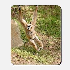 White Handed Gibbon Mousepad