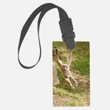 White Handed Gibbon Luggage Tag