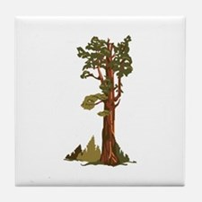General Sherman Tree Tile Coaster