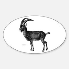 Wild Goat Oval Decal