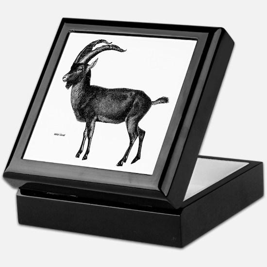 Wild Goat Keepsake Box