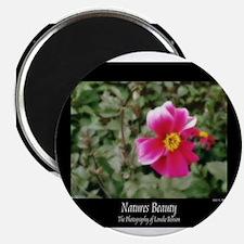 Le Fleur de Versailles Magnet