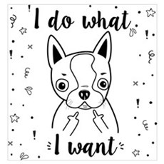 Boston Terrier I Do What I Want Poster