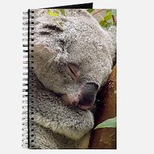 Sleeping Koala Bear Journal