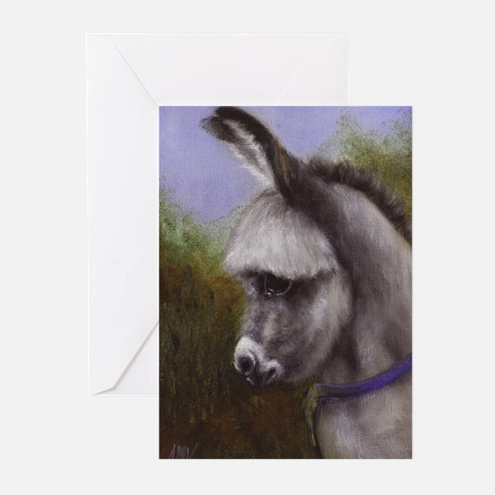 Cute Foal Greeting Cards (Pk of 20)