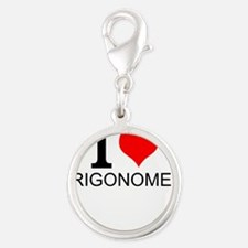 I Love Trigonometry Charms