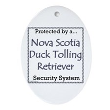 Toller Security Oval Ornament