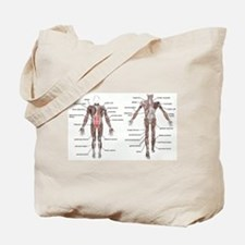 Unique Physical therapist Tote Bag