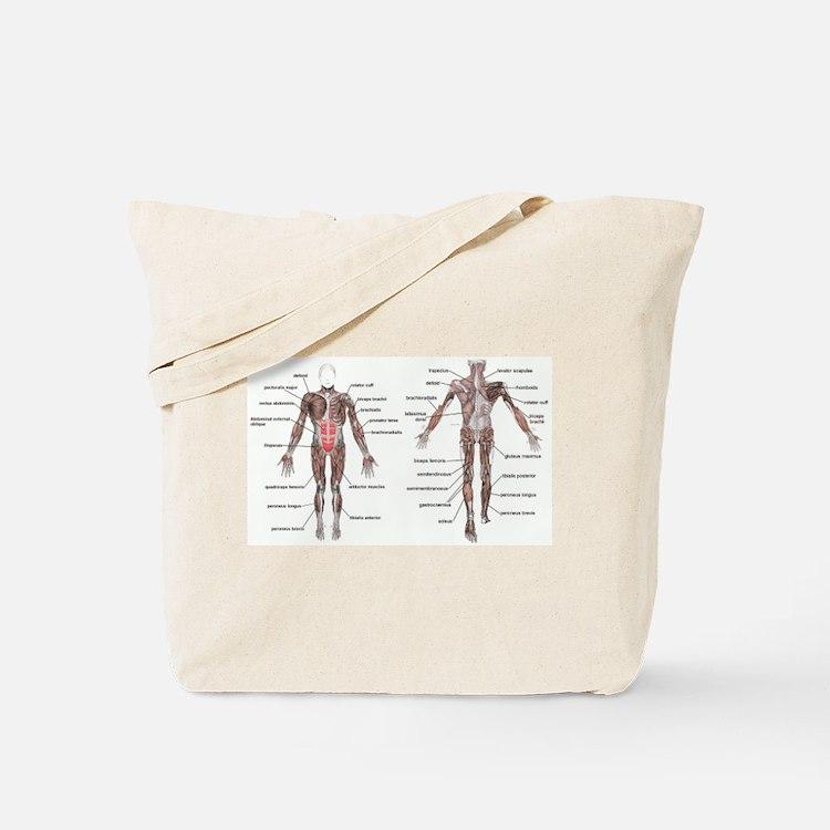 Cute Orthopedic surgeon Tote Bag