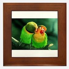 Cute Birds Framed Tile