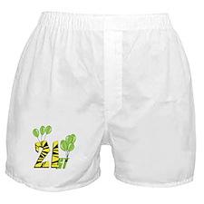 Green Balloon 21 Boxer Shorts
