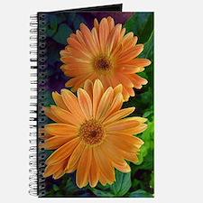 Orange Daisy Journal