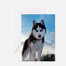 Husky Dog Outdoors Greeting Cards