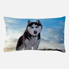Husky Dog Outdoors Pillow Case
