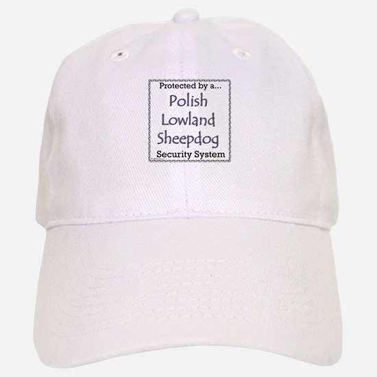 Lowland Security Baseball Baseball Cap