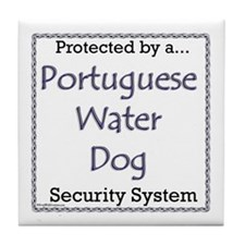 PWD Security Tile Coaster