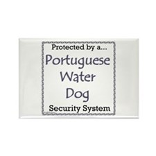 PWD Security Rectangle Magnet