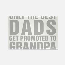 Only The Best Dads Get Promoted To Grandpa Magnets