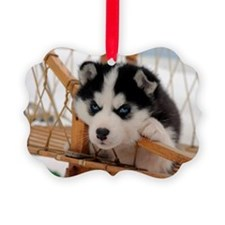 Husky puppy 2 Ornament