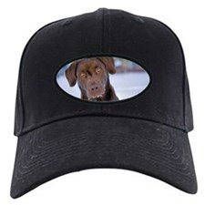 Chocolate Labrador Retriever Baseball Hat