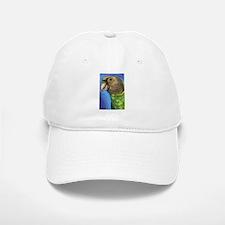 Senegal Parrot Hat
