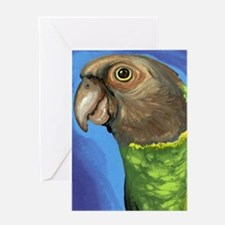 Senegal Parrot Greeting Cards