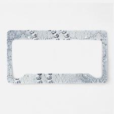 Diamond Licence Plate Frames Diamond License Plate