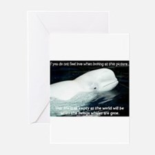 BELUGA Greeting Cards (Pk of 10)