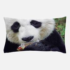 Panda Treat Pillow Case