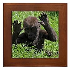 Gorilla20151002 Framed Tile
