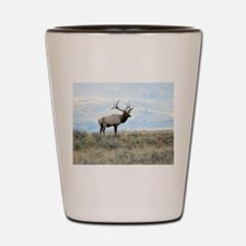 Rocky Mountain Elk 2 Shot Glass