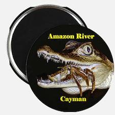 Amazon River Cayman- Magnet