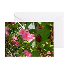 Pink Azalea And Spice Bush Greeting Cards
