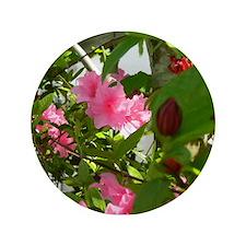 Pink Azalea And Spice Bush Button