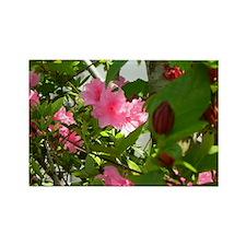 Pink Azalea And Spice Bush Magnets