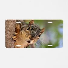 Funny Squirrel Aluminum License Plate
