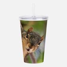 Cute Squirrels Acrylic Double-wall Tumbler