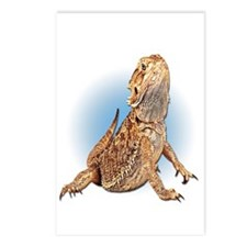 Bearded Dragon Postcards (Package of 8)