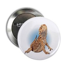 "Bearded Dragon 2.25"" Button (10 pack)"