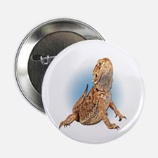 Bearded Dragon Button