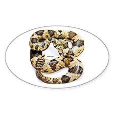 Rattlesnake Snake Oval Decal