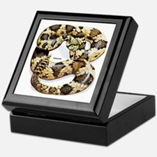 Rattlesnake Snake Keepsake Box