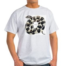 King Snake Ash Grey T-Shirt