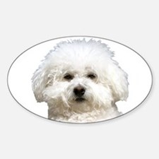 Fifi the Bichon Frise Oval Decal