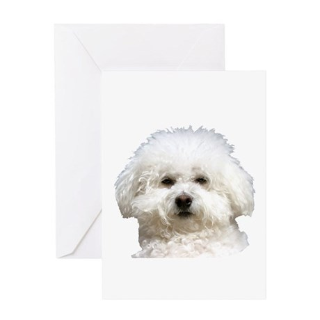 Fifi the Bichon Frise Greeting Card