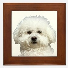 Fifi the Bichon Frise Framed Tile