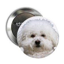 "Fifi the Bichon Frise 2.25"" Button (10 pack)"